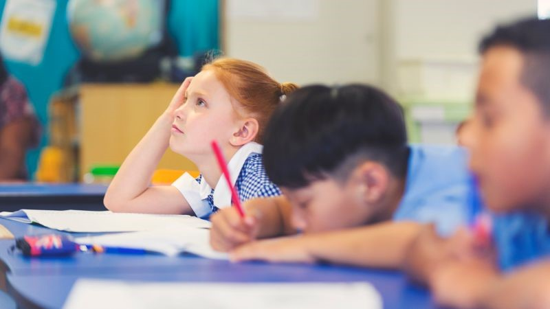 School children being uninterested in a classroom activity.