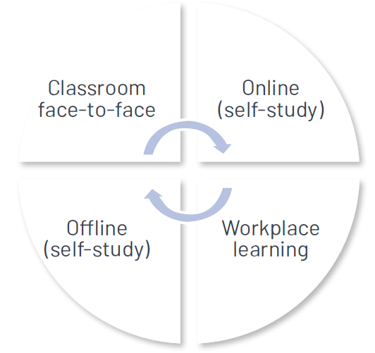 Diagram of the different methors of learning.